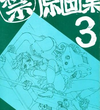 3 cover